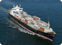 International cargo shipping, freight forwarding and container sea transport- MgSystem